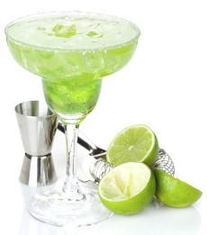 Best Margarita Blender