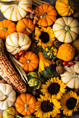 Fall Season Foods
