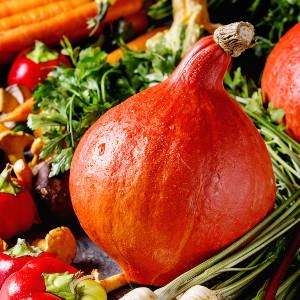 Easy Fall Dinner Recipes