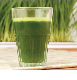 Juicing with a Hurom slow juicer
