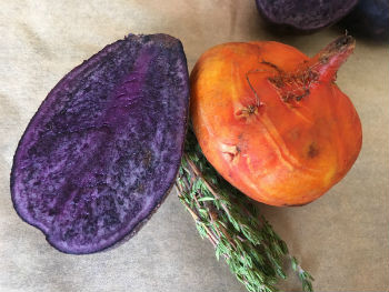 Golden Beets and Purple Potatoes