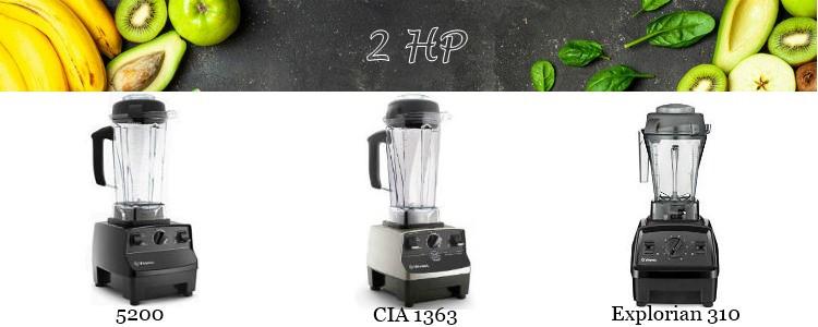 Vitamix 2HP motor